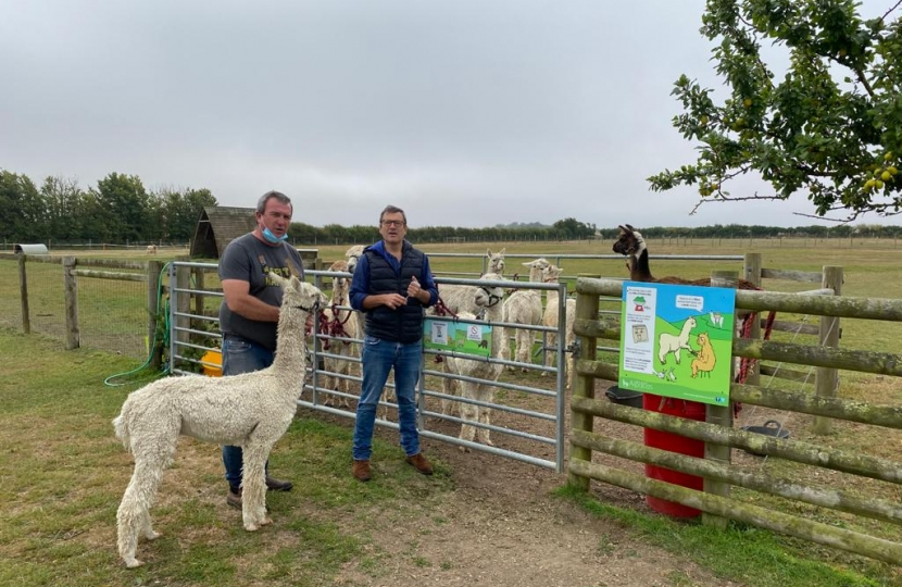 Visit to West Wight Alpacas July 2020
